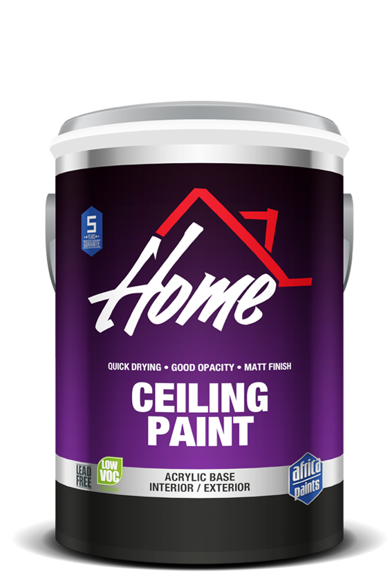 home_ceiling_paint